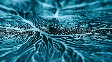 Neuron-system