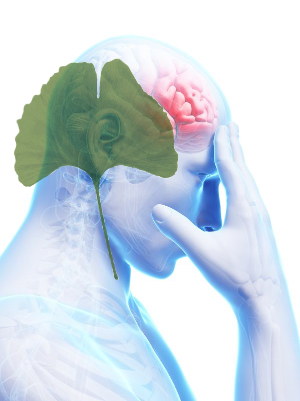 stroke_recovery(1).png